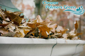 gutter-cleaners-palmers-green
